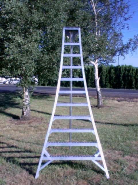 Where to find Ladder - Orchard 20 in Vancouver