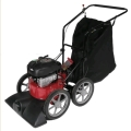 Where to rent Leaf Vac, Snapper 25  SV25650B in Vancouver BC